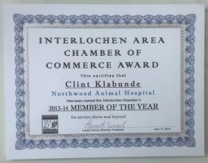 Member of the year!