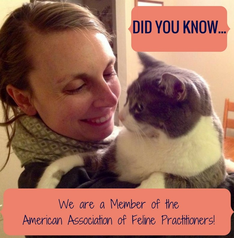 we-are-a-member-of-the-american-association-of-feline-practioners-1